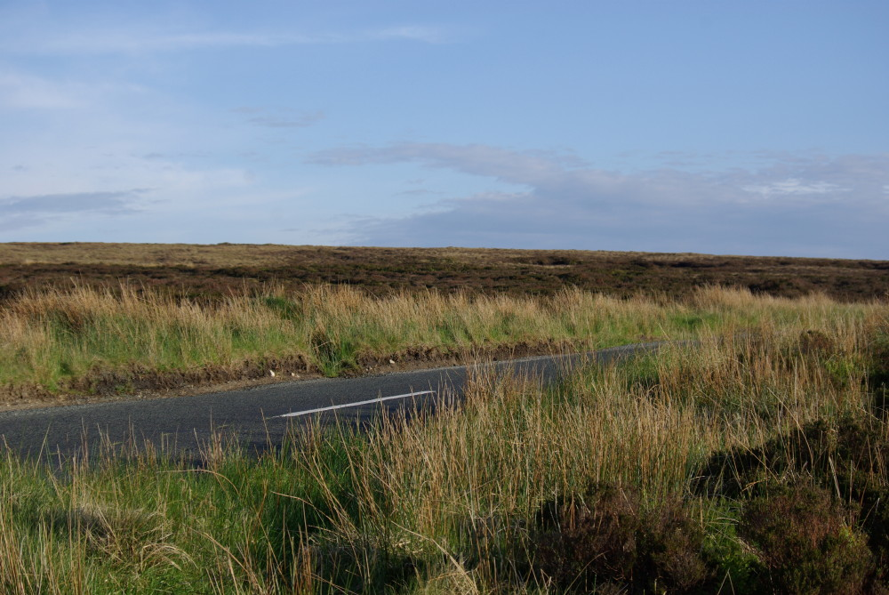Military Road at Sally Gap