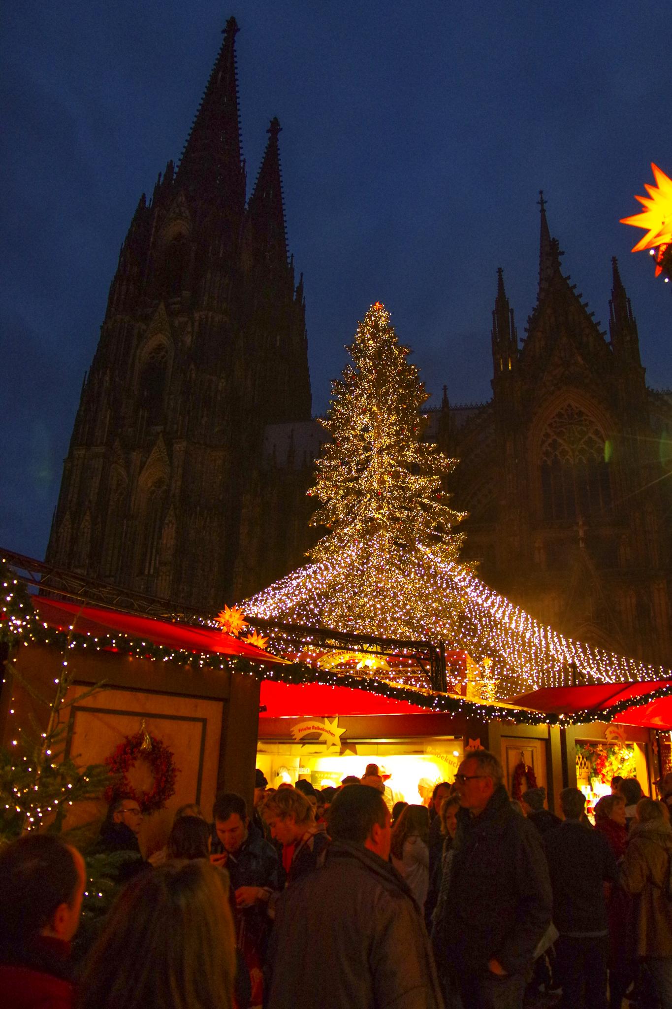 C4 Christmas Lights